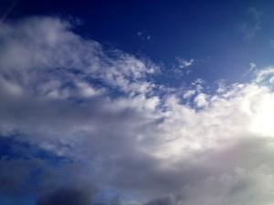 梅雨の晴れ間に。